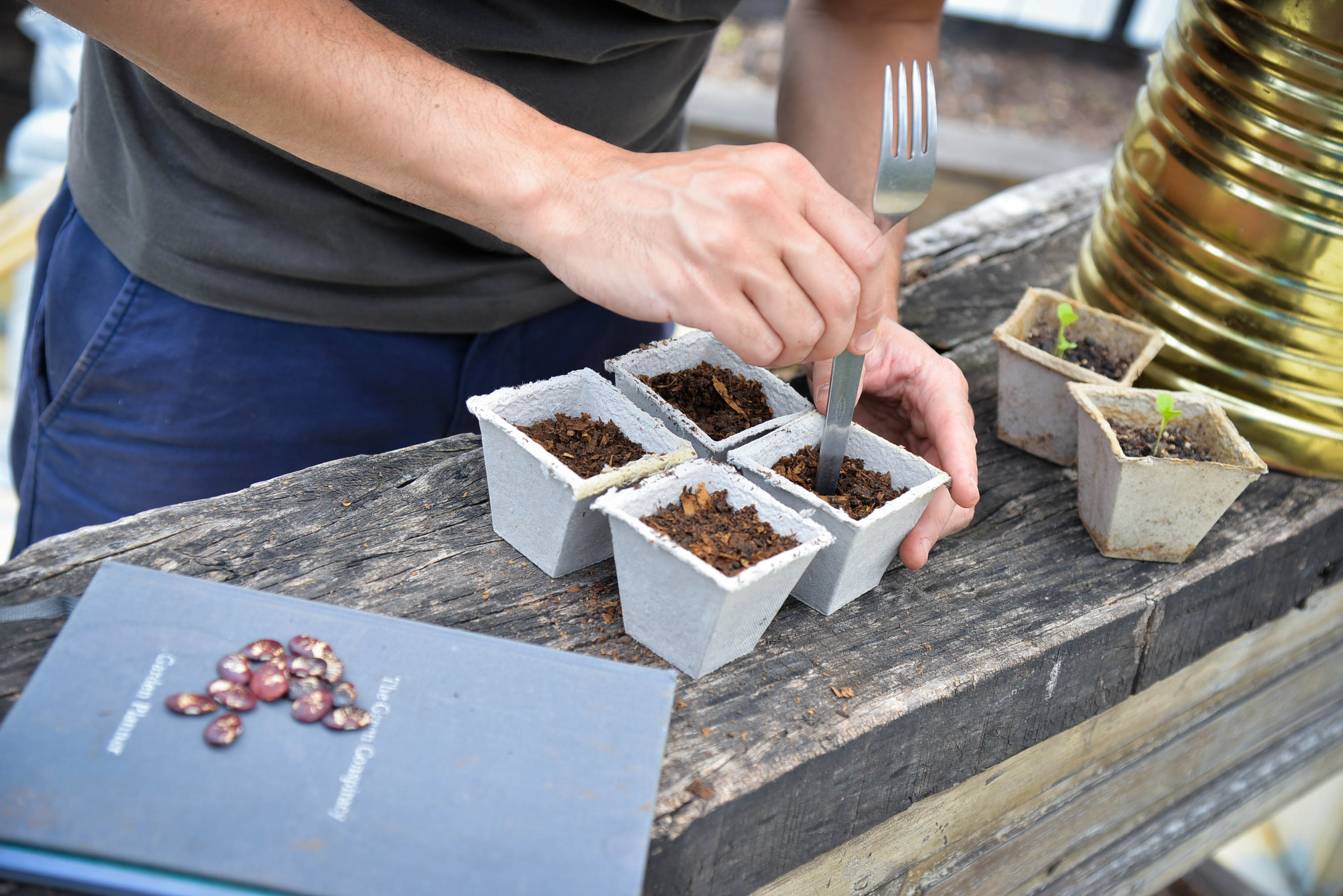 3 things to consider when starting your growing space