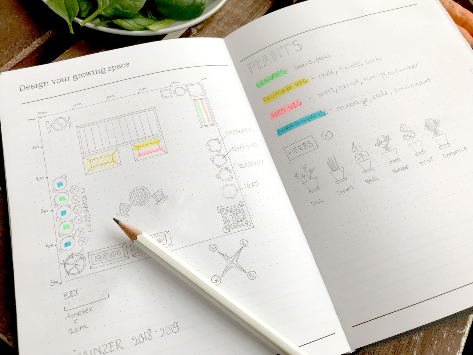 journal with drawing of the growing space to find out which is the best pot for plants